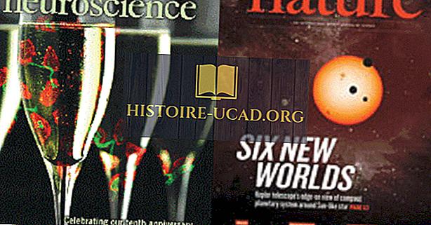 20 стран, публикующих самые научные статьи