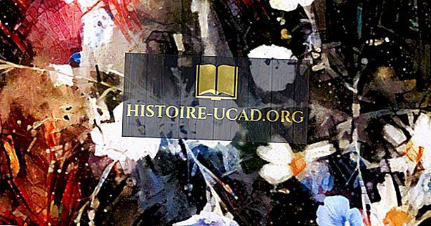 Mākslas kustības visā vēsturē: Dada