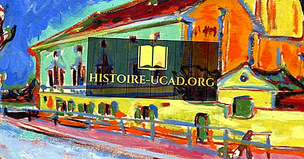Umělecké pohyby v průběhu dějin: Fauvism