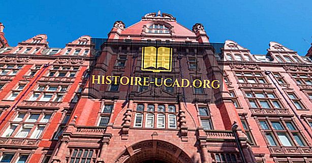 Die größten Universitäten in Großbritannien nach Einschreibung
