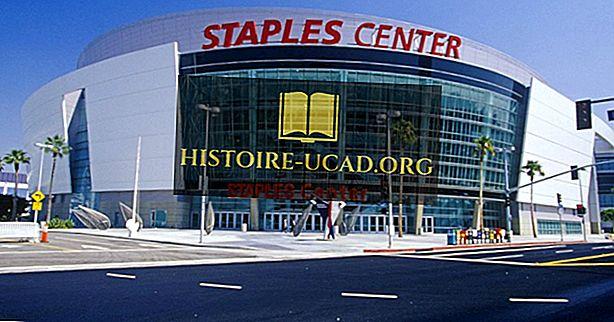 Športové tímy v Los Angeles