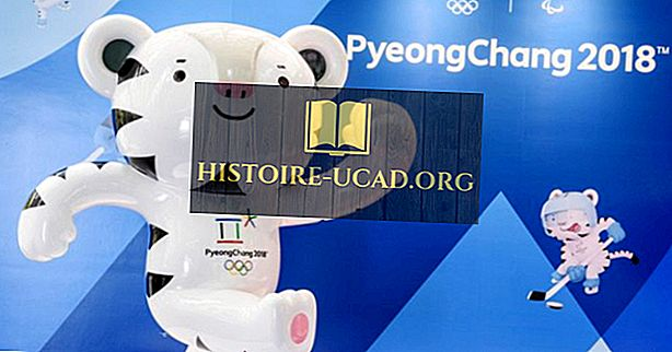 الرياضات الاولمبية الشتوية الرسمية
