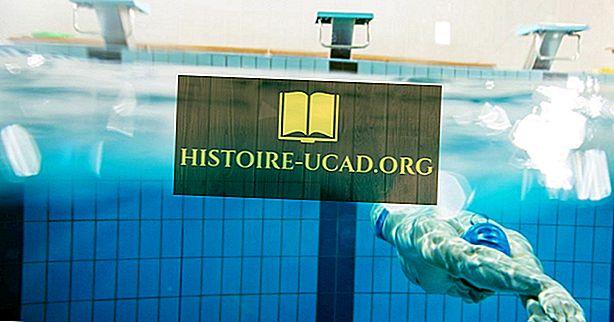 Колко голям е басейн с олимпийски размери?