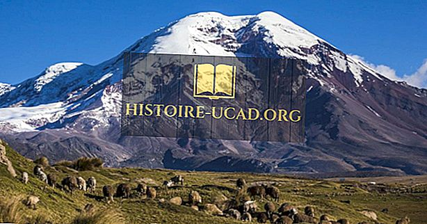 Pegunungan Tertinggi di Ekuador