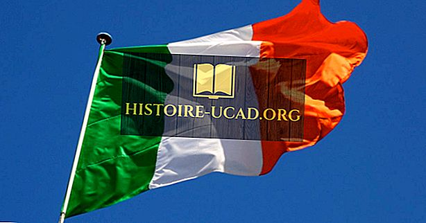 Apa Negeri Bebas Ireland?