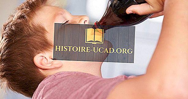 Negara-negara yang mempunyai Tahap Tertinggi Penggunaan Minuman Lembut