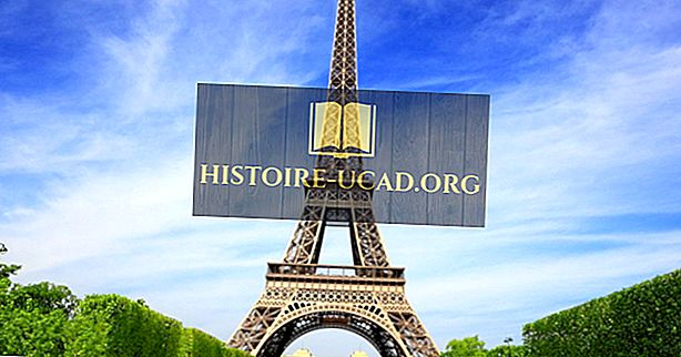 Seberapa Tinggi Menara Eiffel?