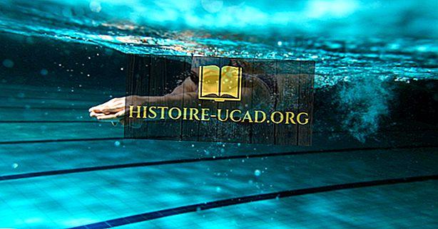 Страни, произвеждащи най-добрите конкурентни плувци