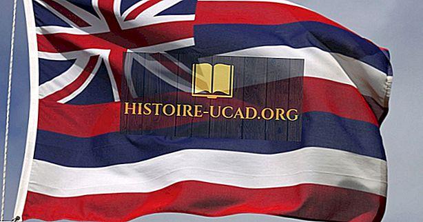 Hawaii Steagul de Stat