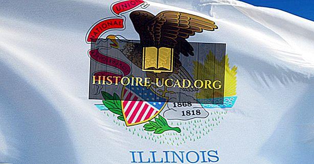 Zastava države Illinois