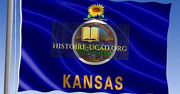 Kansas állam lobogója