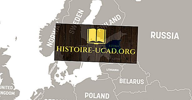 Welk continent is Estland binnen?