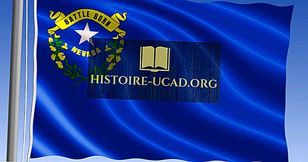 Государственный флаг Невады