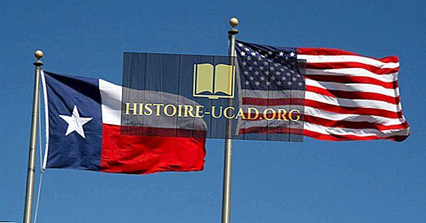 Текас Стате Флаг