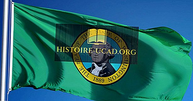 Vlajka státu Washington