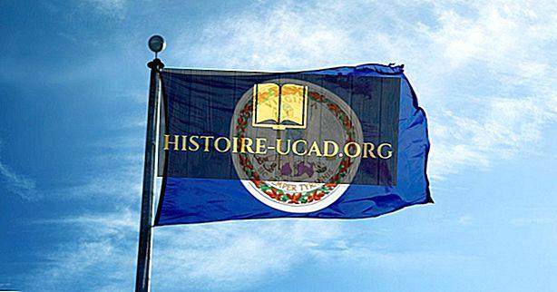Vlajka státu Virginia