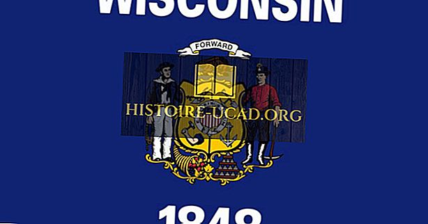 विस्कॉन्सिन राज्य का झंडा