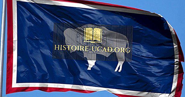 Държавен флаг на Уайоминг