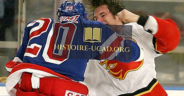 Perché i combattimenti sono permessi nell'hockey su ghiaccio?