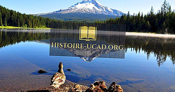 De 10 högsta toppar i Oregon