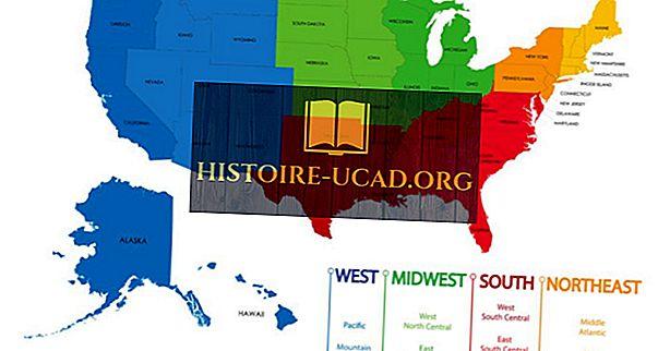 Uradno priznane štiri regije in devet oddelkov Združenih držav
