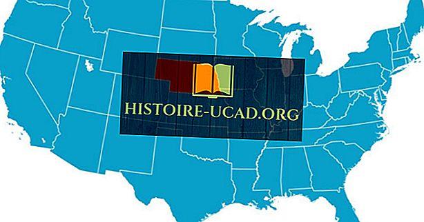 अमेरिका का एकमात्र त्रिभुज भूमि पर स्थित राज्य कौन सा है?