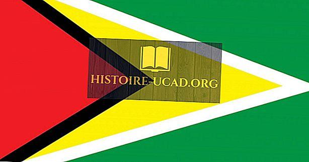 O que significam as cores e os símbolos da bandeira da Guiana?