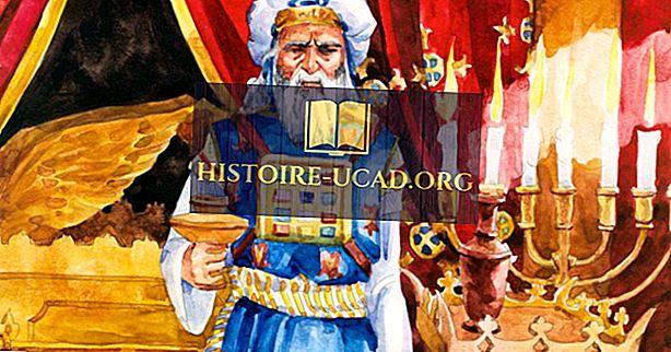Ai là người Sa-đu-sê?