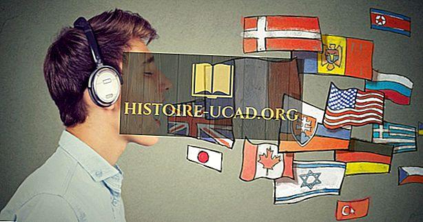 Jaki jest oficjalny język Stanów Zjednoczonych?